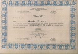 MARIO BIANCO - ATTESTATO di Assaggiatore di mieli - Azienda Apistica Mario Bianco di Bianco A.